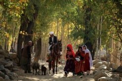 Basir Seerat (1)